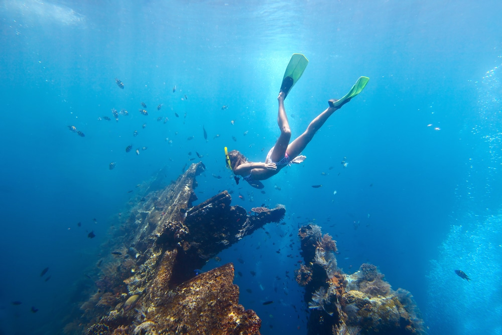 Reef And Wrecks Island Tour by FGB Travel and Tours